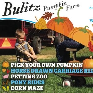 Bulitz Pumpkin Farm 1-2 0916.indd